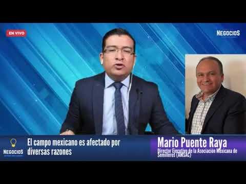 Entrevista al Ing. Mario Puente Raya con Miguel A. Pallares   Ideas de Negocios