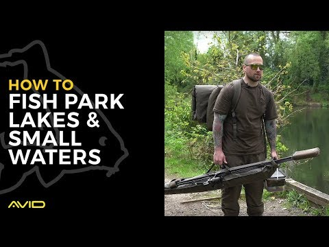 AVID CARP- How To Fish Park Lakes & Small Waters