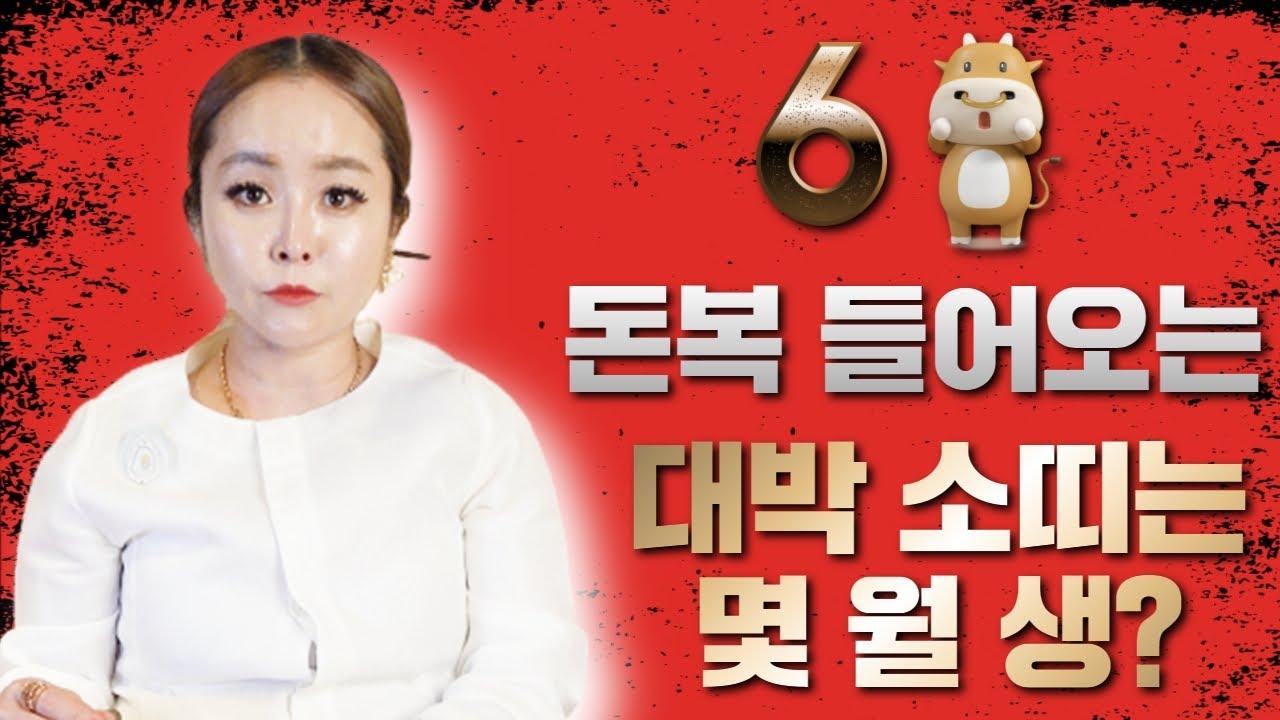 6월 금전운 애정운 부동산운 대박 소띠는 몇월생? / 장산할매당  ☎ 010 3262 8151