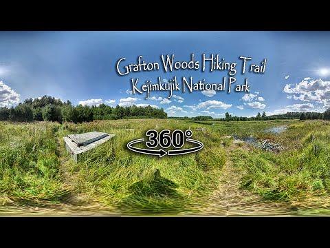 Grafton Woods Hiking Trail 360° - Kejimkujik National Park