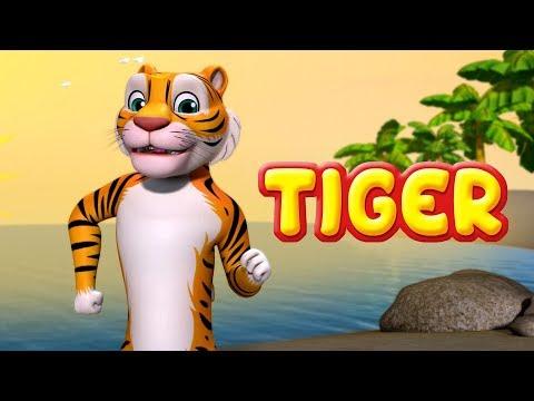 Tiger Song |