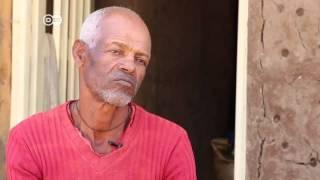 زراعة الزهور في أثيوبيا   الأخبار