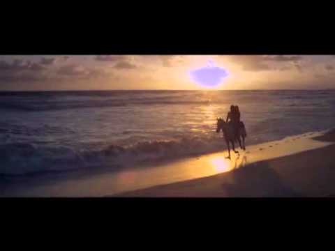 Avicii: I Could Be The One (official Video)