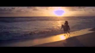 Avicii I Could Be The One Official Video