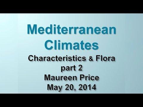 Mediterranean Climate Part 2