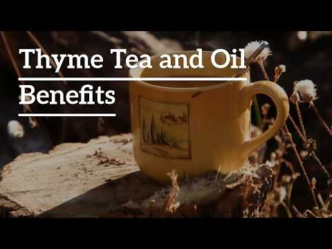 Thyme Benefits, Recipes and Side Effects