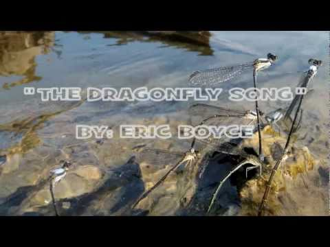 THE DRAGONFLY SONG, BY: ERIC BOYCE