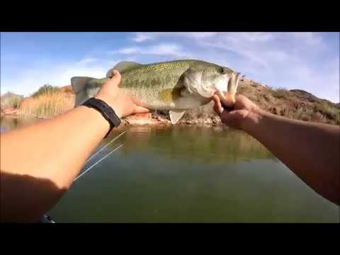 Fishing Bill Williams Ft. Loudmouth Bassin'