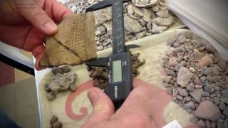 ArchaeologyIN3- Laser Scanning Artifacts