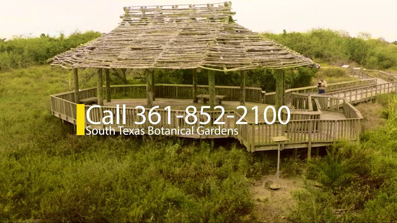 South Texas Botanical Gardens - YouTube