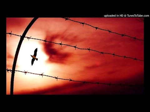 Koito feat. Nympha- Verso la libertà