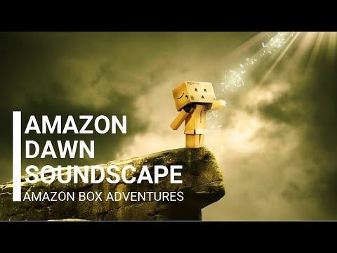 amazon-dawn-soundscape---amazon-box-adventures