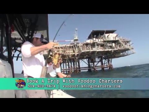 Tuna Fishing with Voodoo Charters in Venice, LA, The Fisherman's Guide