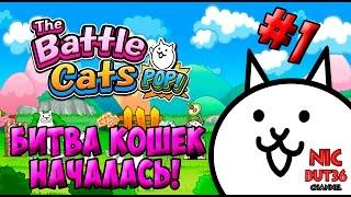 The Battle Cats - Битва кошек началась! (Выпуск 1)