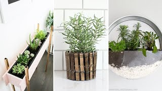 10 Clever and Cheap Indoor Garden Ideas