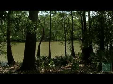 PBS Show March 15-21, 2015, #2322 - Texas Parks and Wildlife [Official]