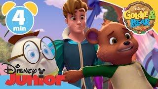 Goldie & Bear | Prince Charming Song | Disney Junior UK