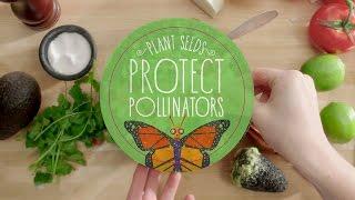 Guacamole Without Pollinators L Protect Pollinators | Whole Foods Market