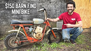 1970 Fox Condor Mini Bike Revival | 3 Tips & Tricks for Buying a Mini Bike!