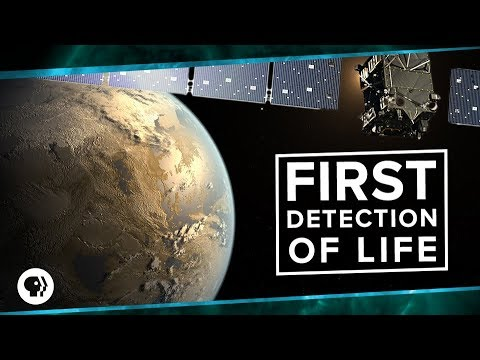 First Detection of Life | Space Time