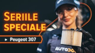 Reparații PEUGEOT cu propriile mâini - tutorial video online