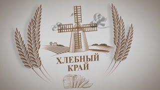 «Хлебный край»: директор Алтайского филиала Центра оценки качества зерна Мария Шостак