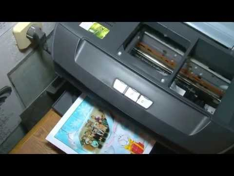 принтер p50 photo stylus epson фото
