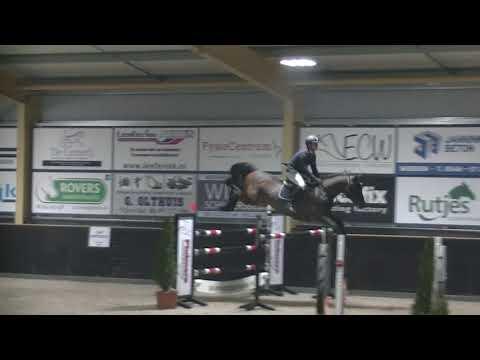 sir stakkato stallion 7yr stakkato x calypso 1 40 GP hellendoorn