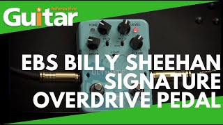 EBS Billy Sheehan Signature Overdrive Pedal | Review