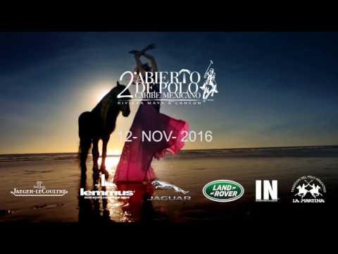 APCM 2016 promo