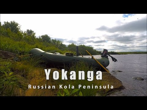 Salmon Fishing On The Yokanga River