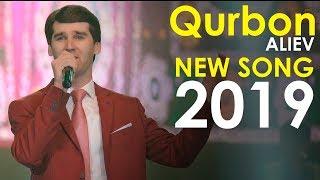 Курбон Алиев - Шоли зар 2019 | Qurbon Aliev - Sholi zar 2019