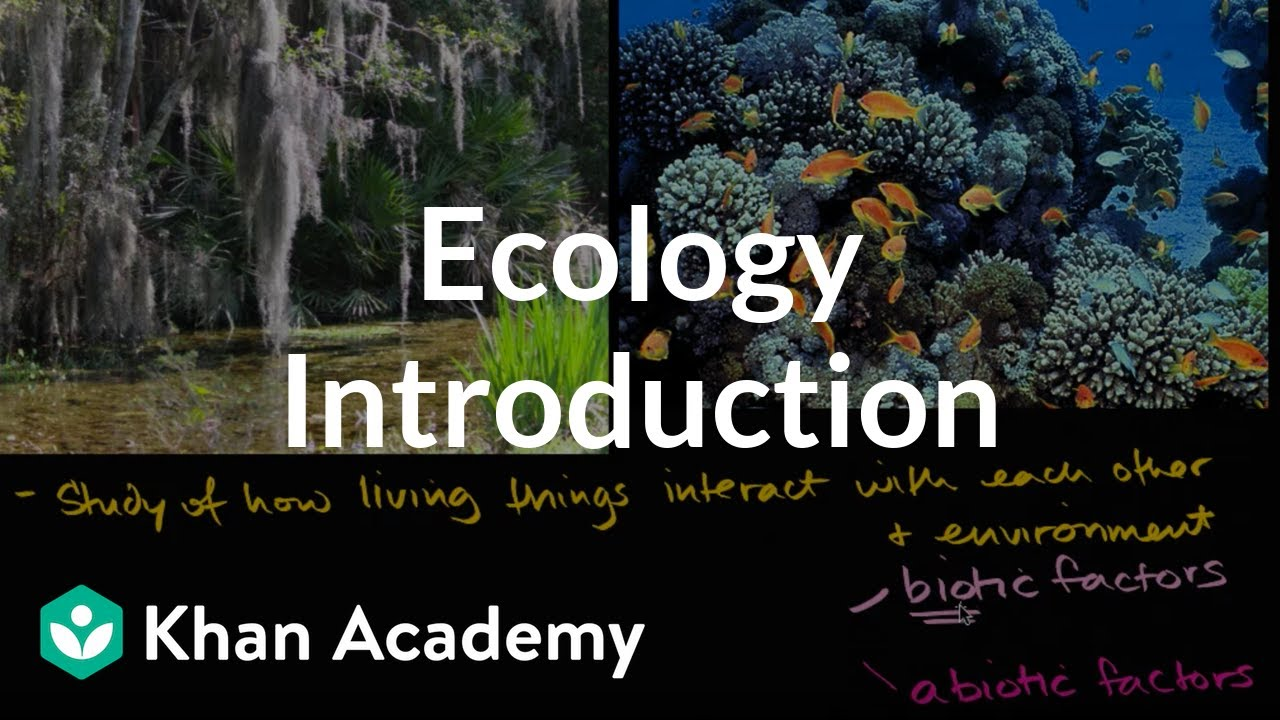 Ecology introduction (video) | Ecology | Khan Academy