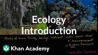 Ecology introduction | Ecology | Khan Academy