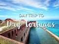Take A Day Trip to Dry Tortugas National Park With Us!