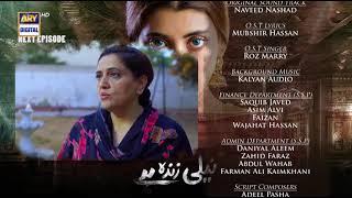 Neeli Zinda Hai Episode 14 | Teaser | ARY Digital Drama