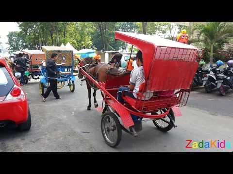 Lagu Anak Indonesia Naik Delman Istimewa - Lagu Anak Terpopuler