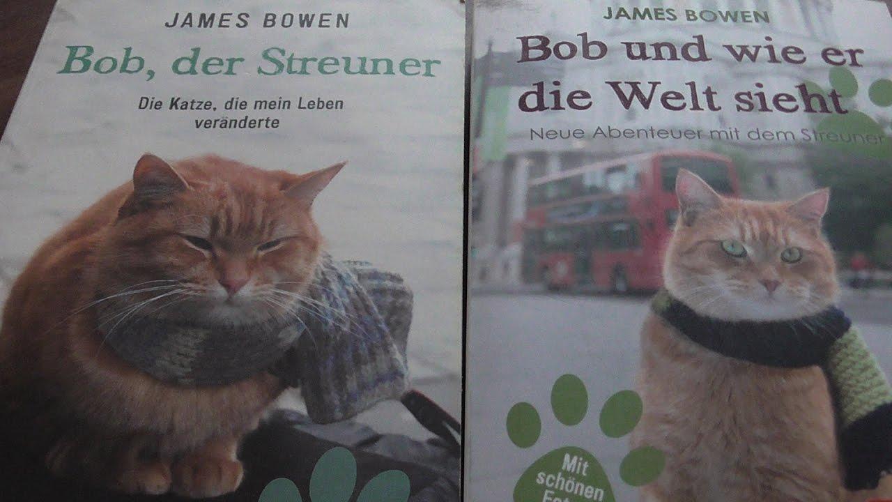 Bob Der Streuner Kino