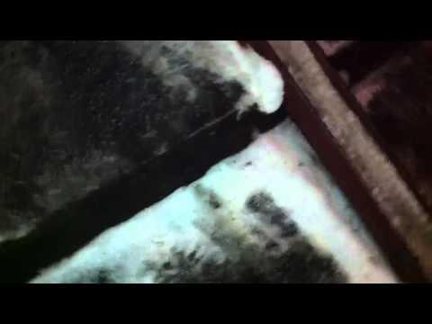 видео: Соль у подъезда