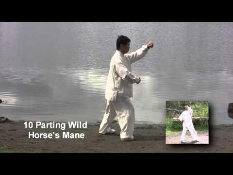 Grandmaster Yang Jun Performs 16-Movement Form