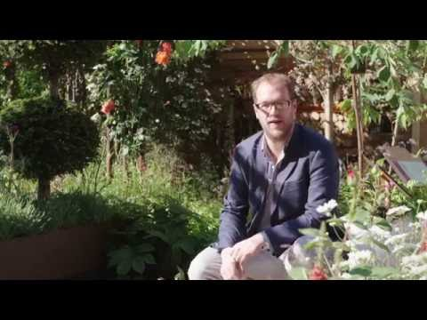 Health, Happiness & Horticulture: RHS Greening Grey Britain