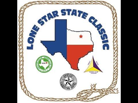 12-09-2017 Texas Kennel Club, Dallas TX - Irish Wolfhounds