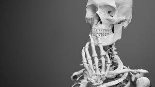 New Human Species Found – Answers News: April 15, 2019