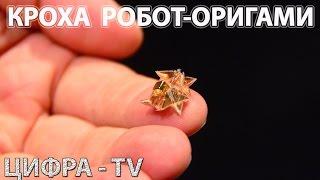 Крошечный робот-оригами