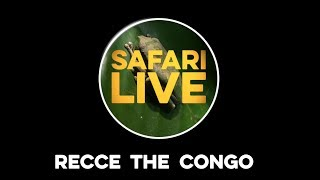safariLIVE Recce the Congo Rainforest thumbnail