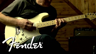 Fender Tex-Mex™ Stratocaster® Pickups -- DIRTY