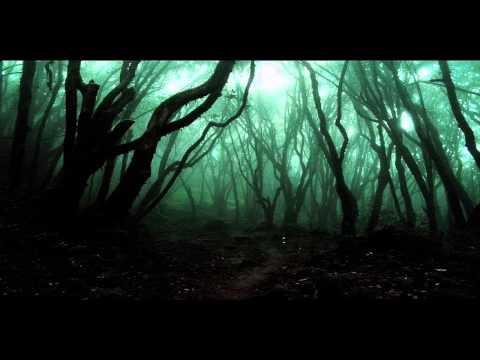Tom Howe - Fear Never Sleeps