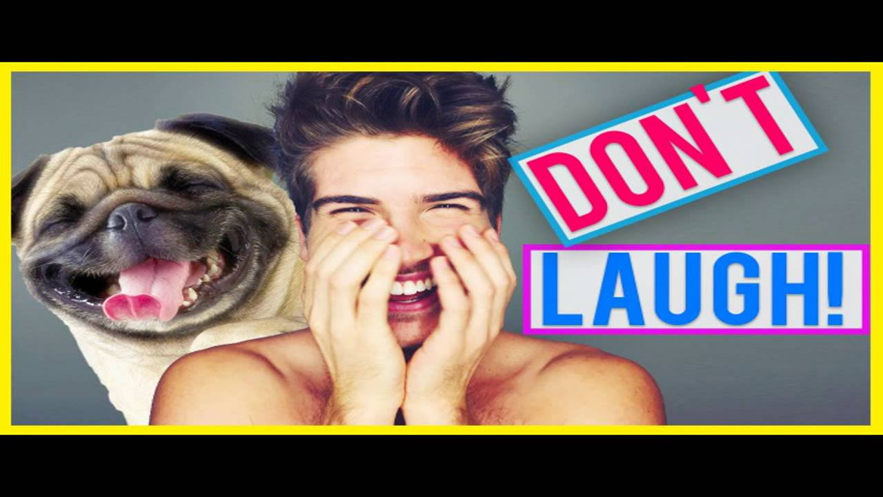 Try Not Laugh Hard Version