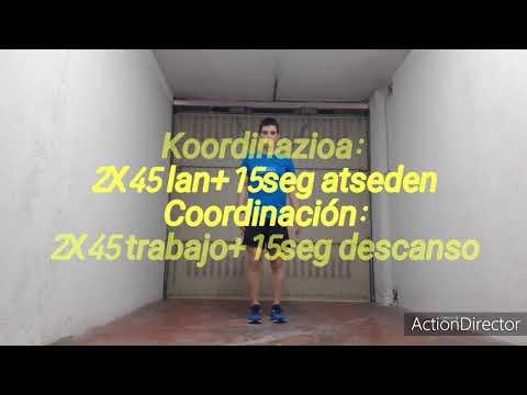 Lasarte 2020 05 15 Beroketa   Koordinazioa