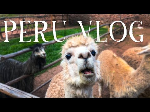 WANDR | PERU TRAVEL VLOG (Our Journey to Machu Picchu, The Rainbow Mountains, and More)